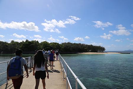 グリーン島への架け橋